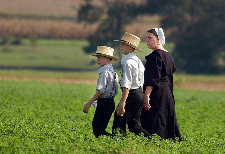 Amish facts