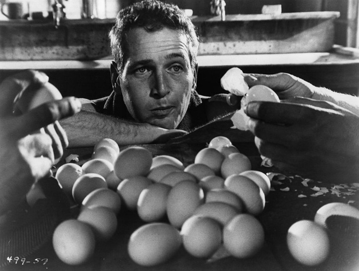 Egg Scene Cool hand Luke