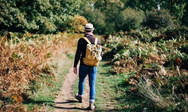 Walking Good For Mental Health