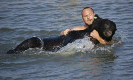 Man Saves Drowning Bear - Animal Rescue