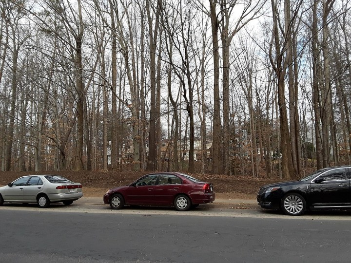 Cars in the forest