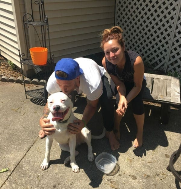 dan tillery girlfriend dog diggy rescue puppy