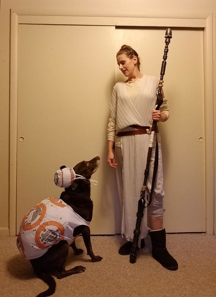 bb8 rey star wars halloween costumes dog