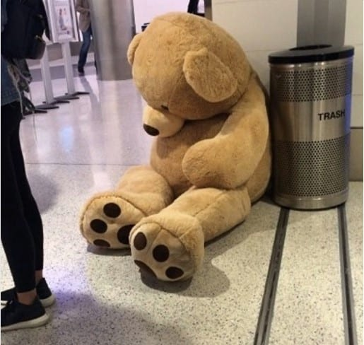 air travel teddy bear