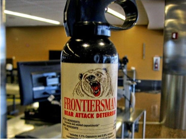 bear repellent air travel