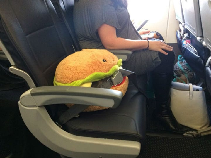 Cheeseburger air travel