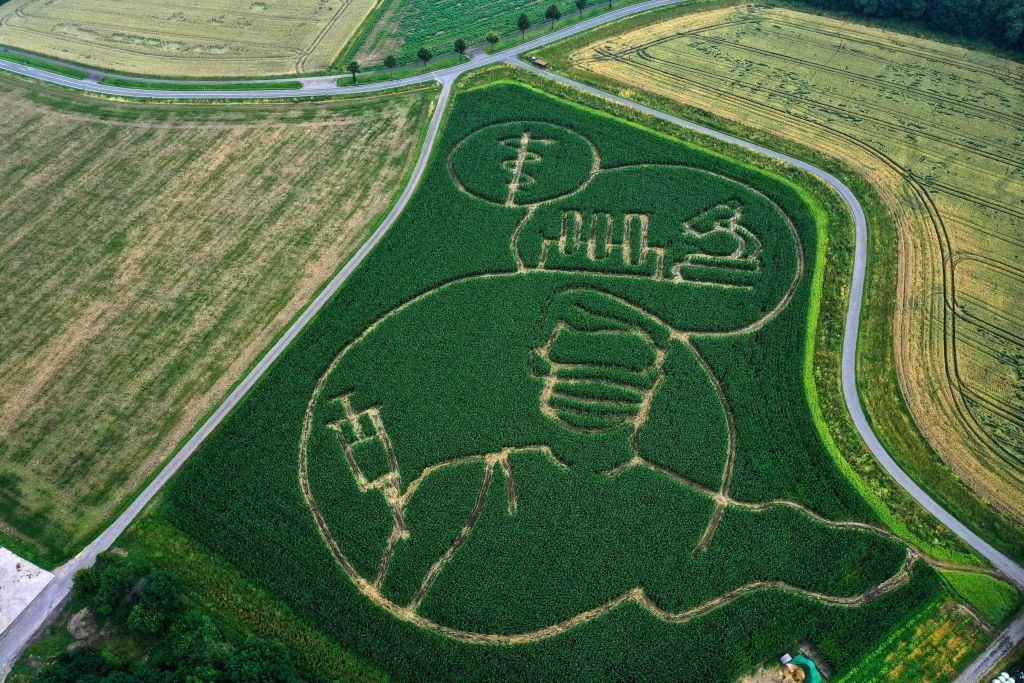 An aerial photo taken on July 11, 2021 shows a maze in a maize field forming an image of a person who gets vaccinated against the coronavirus (Covid-19), in Selm, western Germany. - The maze was created by farmer Benedikt Luenemann