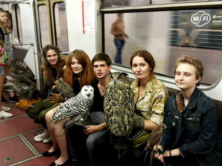 owls moscow subway moments riders