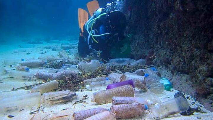 Plastic Waste in Mariana Trench