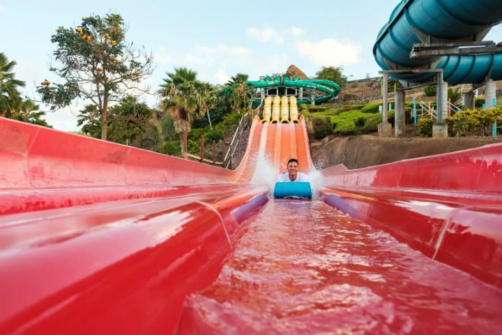 dream job, water slide