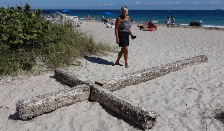 florida cross washed ashore beach