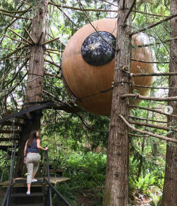 vancouver canada forest spheres coolest hotels