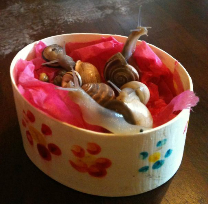 mothers day snails gross funny hilarious kids