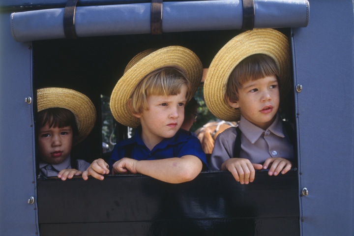 Amish boys on buggy