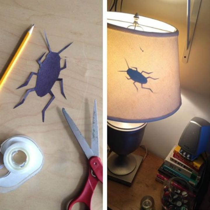 cockroach lamp pranks