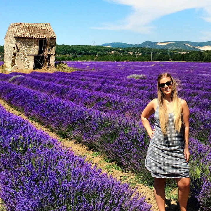 Lavender Fields Provence France colorful places