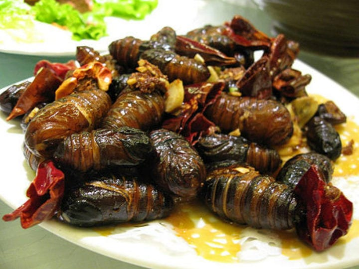 Silkworm Pupae chinese foods