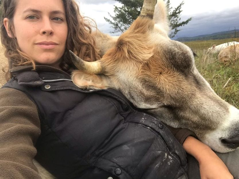 girl with cow on her lap