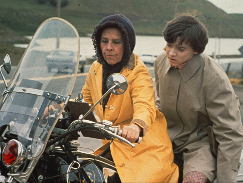 harold and maude film